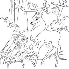 bambi2-43
