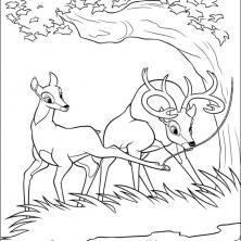 bambi2-62